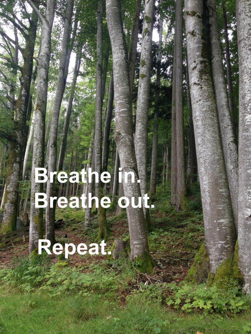 Cora Hiebinger Breath, Atmen Einzelsitzungen